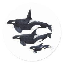 Sticker orca