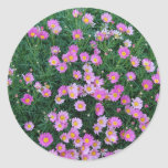 Sticker-Pink Flower