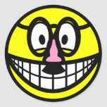 Disguised smile   sticker_sheets