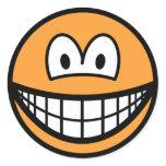 Colored smile orange  sticker_sheets