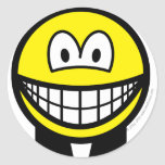 Clerical smile   sticker_sheets
