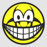 Biohazard smile version II  sticker_sheets