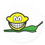 Snail smile   sticker_sheets