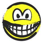 Fude smile   sticker_sheets