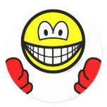 Wanten smile   sticker_sheets