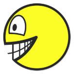 En profile smile Right  sticker_sheets