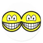 Siamese smile   sticker_sheets