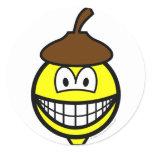 Acorn smile   sticker_sheets