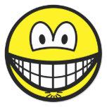 Asshole smile   sticker_sheets