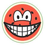 Watermelon smile   sticker_sheets