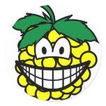 Grapes smile   sticker_sheets