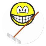 Raking smile   sticker_sheets