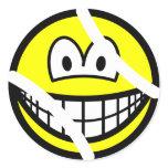 Tennisball smile   sticker_sheets