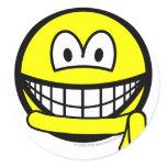 Yellow belt smile   sticker_sheets