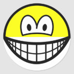 Half smile top  sticker_sheets