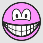 Colored smile pink  sticker_sheets