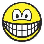 Big smile   sticker_sheets