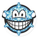 Snowflake smile   sticker_sheets