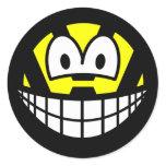 VW smile   sticker_sheets
