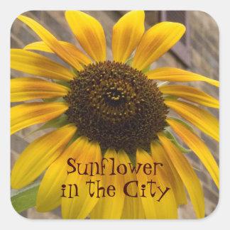 Sticker -- Square Sticker -- Sunflower in the City