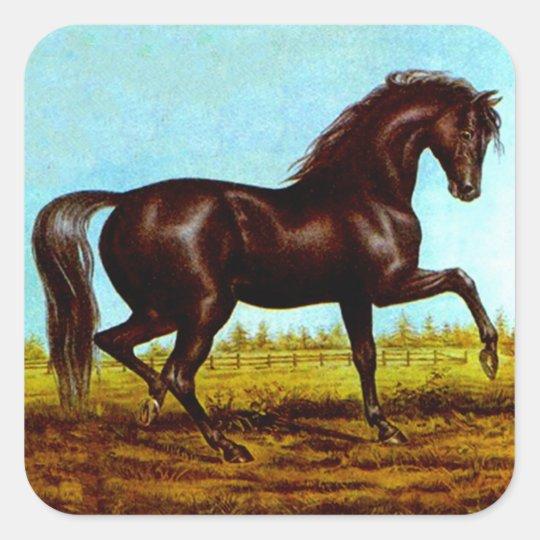 Sticker Vintage Black Beauty Horse Fancy Canter