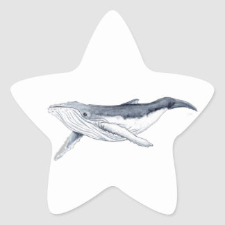 Sticker whale drinks yubarta stars