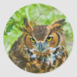 Sticker with Great Horned Owl