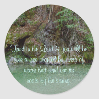 Sticker with photo of tree by a river
