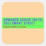 armando aguiar (Rato)  2013 smart street  Stickers