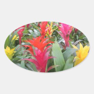 Stickers - Bromeliad Forest