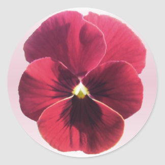 Stickers - Dark Red Pansy