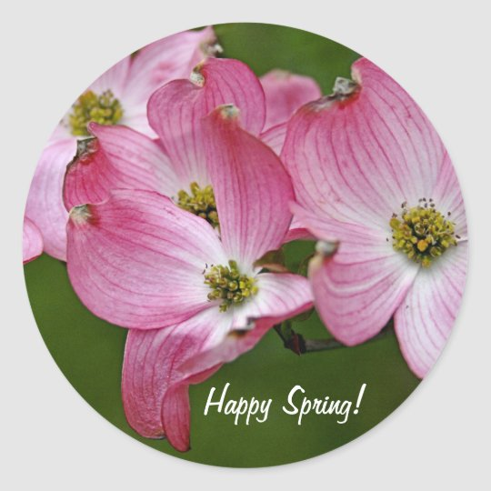Stickers:  Happy Spring/Pink Dogwood Classic Round Sticker