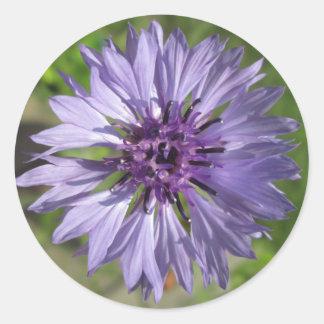 Stickers - Lilac/Purple Bachelor's Button