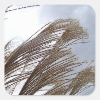 Stickers - Maiden Grass Stormy Sky