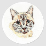 Stickers: Noble the Cat Classic Round Sticker