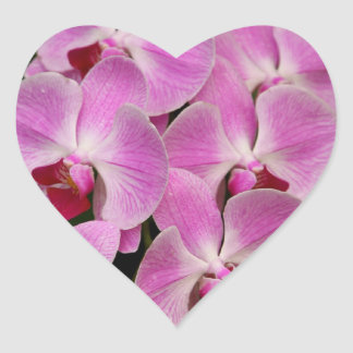 Stickers - Orchid