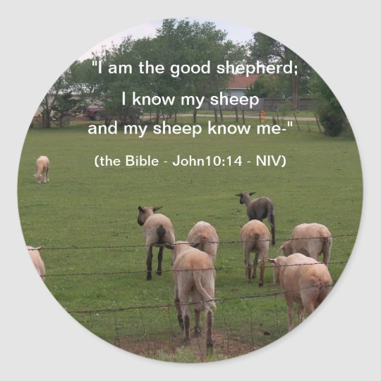 Stickers/Sheep Classic Round Sticker