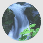 Stickers: Sol Duc Falls