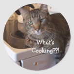 Stickers -What's Cooking??!