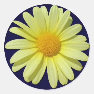 Stickers - Yellow Daisy on Midnight Sky