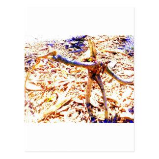 stickman postcard