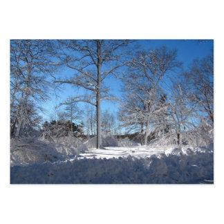 Sticky Snow 106 ~ ATC Large Business Card