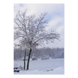 Sticky Snow 24 ~ ATC Large Business Card