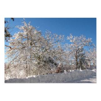Sticky Snow 26 ~ ATC Large Business Card