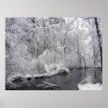 Sticky Snow 27 ~ Print