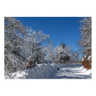 Sticky Snow 28 ~ ATC Large Business Card