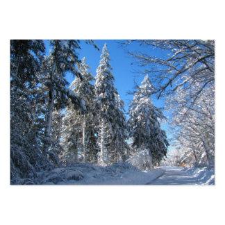 Sticky Snow 32 ~ ATC Large Business Card