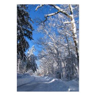 Sticky Snow 35 ~ ATC Large Business Card
