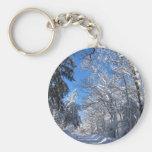Sticky Snow 35 ~ keychain