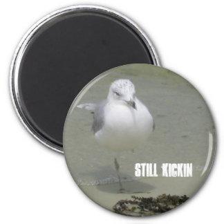 Still Kickin 2 Inch Round Magnet